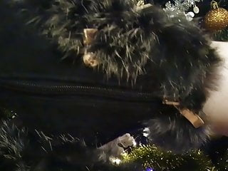 X-hamster vintage lesbian - X hamster lady l hh 2: sexy black boots.