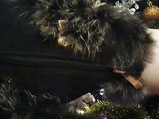 X hamster longest cum stream - X hamster lady l hh 2: sexy black boots.