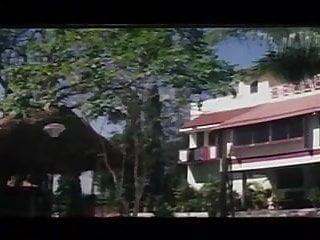 Mallu sex reshma - Mallu girl reshma hot exposing