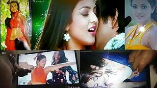 Kajal Agarwal cum tribute montage 3.0