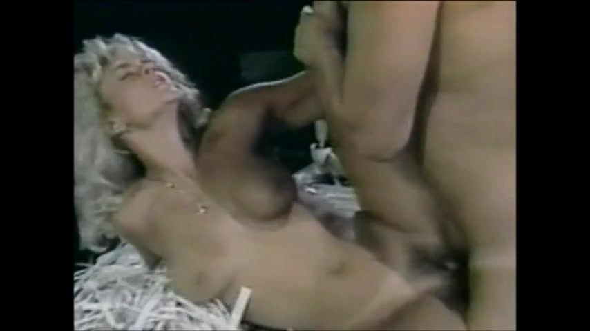 Joey Silvera Porn