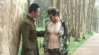 Japan - Wargame in forest